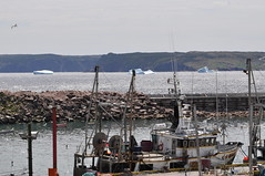 Icebergs in the distance (shankar s.) Tags: seascape canada dock cove nfl iceberg fishingboat motorboat floatingice coastalroad coastaltown anchored moored localhistory baydeverde oceanroad fishingvessel icemountain coastaldrive coastalscenery fishingcraft easterncanada newfoundlandandlabrador icechunks baccalieutrail explorertrail breakingiceberg