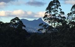3850 Kyogle Road, Mount Burrell NSW