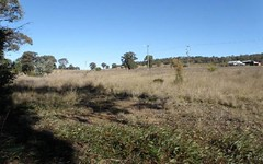 Lot 25, 327A Adelargo Road, Grenfell NSW