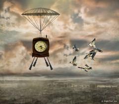 The Landing (rubyblossom.) Tags: city sky clock girl birds clouds buildings person fly legs landing spacecraft soar 2016 challenge3 makeitinteresting rubyblossom rubystreasures