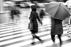 The daily grind #2 (Birdhouse camper) Tags: street blackandwhite blur umbrella canon copenhagen denmark blackwhite 7d