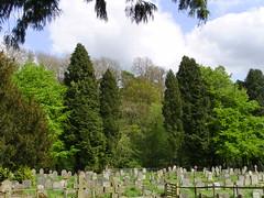 Symmetree (Nekoglyph) Tags: trees green church stone yorkshire historic symmetrical churchyard gravestones kirkdale stgregorysminster
