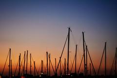Puerto. Punta del Moral (Huelva) (Angela Garcia C) Tags: turismo huelva geografaurbana urbano urbanismo infraestructura embarcaciones atardecer puntadelmoral