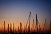 Puerto. Punta del Moral (Huelva) (Angela Garcia C) Tags: turismo huelva geografíaurbana urbano urbanismo infraestructura embarcaciones atardecer puntadelmoral