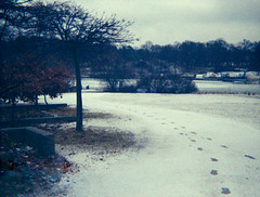 2016-03 - 022 - 05 (sarajoelsson) Tags: winter snow color film march holga lomo lomography sweden stockholm 110 toycamera grain gloom everydaylife spycamera repro 2016 plasticlens filmphotography 110film filmisnotdead colornegatives microholga lomographycolortiger