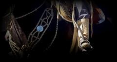 El pretal (Eduardo Amorim) Tags: horse southamerica argentina argentine criollo caballo cheval pferde cavallo cavalo gauchos pferd ayacucho pampa loro hest hevonen gaucho staffa  amricadosul loros stirrup hst gacho estribo  amriquedusud provinciadebuenosaires  recado gachos  sudamrica suramrica amricadelsur  sdamerika crioulo caballoscriollos criollos  pilchas  buenosairesprovince pilchasgauchas steigbgel recao pampaargentina americadelsud botadepotro  crioulos cavalocrioulo americameridionale caballocriollo eduardoamorim cavaloscrioulos estribera estrivo botadegarrodepotro trier pampaargentino