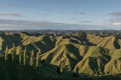 In a forgotten world II (Gafapasta Photography) Tags: newzealand green landscape hills pasture nz northisland emptyspace forgottenworldhighway sh43