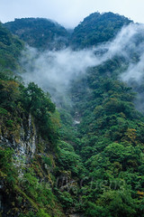 Taiwan-121116-401 (Kelly Cheng) Tags: travel mountain color colour green tourism nature vertical clouds forest landscape daylight colorful asia day outdoor taiwan vivid nobody nopeople canyon colourful tarokonationalpark tarokogorge  traveldestinations  northeastasia