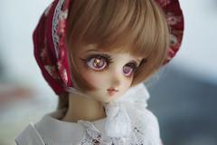 Doll Meet in May (Muri Muri (Aridea)) Tags: ball doll super bjd vs dollfie volks abjd msd nagisa jointed