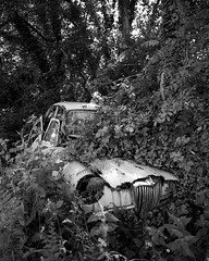 Abandoned (Carl Hall Photography) Tags: blackandwhite bw mamiya film car devon scrap ilford wreckage ilfordpanf panf rb67 mamiyarb67 hc110b kodakhc110b mamiyasekor55mmf45