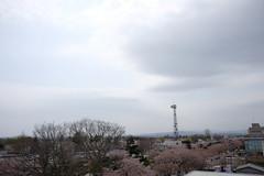 DSCF1616 (chinnian) Tags: japan aomori  fujifilm x70  towada  towadaartcenter  fujifilmx70