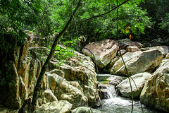 Trail to Ba Ho Waterfalls (Alastair Farr) Tags: travel trees green nature water canon waterfall stream hike vietnam trail cliffjumping nhatrang canon7d bahowaterfalls