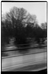 The consequence of movement (Tiefengeist) Tags: 50mm rodinal ilford fp4 125 oneshot agfarodinal ilfordfp4125 r09 revueflexsd1 ar50mmf19 rodinalr09oneshot125