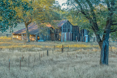 RHM_2449-1535.jpg (RHMImages) Tags: california trees foothills field barn fence landscape us nikon unitedstates sierranevada grassvalley nevadacounty d810 dogbarroad