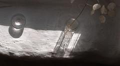 windowsill (the incredible how (intermitten.t)) Tags: light white glass studio movement jar windowsill caustics roundhouse 5513 felinganol 20160223