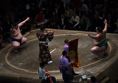Sumo wrestlers before the fight in the ryogoku kokugikan sumo arena, Kanto region, Tokyo, Japan (Eric Lafforgue) Tags: people male men sport japan horizontal asian japanese tokyo big fight referee asia fighter martial wrestling fat traditional champion culture competition clash ring indoors tournament ritual leisure sumo inside strength athlete wrestlers groupofpeople adultsonly cultural overweight ryogoku competitors kantoregion smallgroupofpeople 9people mixedagerange colourpicture 2029years japan161081