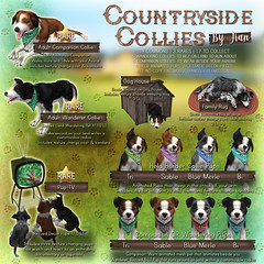 JIAN Countryside Collies (The Epiphany \ July) ([JIAN]) Tags: dog pet pets dogs tv pups puppies mesh country canine secondlife companion jian collies bordercollies