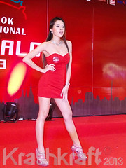 FHM Girl Next Door | Auto Salon 2013