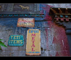 Souvenir Ideas (DugJax) Tags: asia waltdisneyworld animalkingdom expeditioneverest ef1740mmf4lusm canonrebelt2i