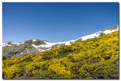 _JRR2787 (JR Regaldie Photo) Tags: mountain snow rocks nieve lagunas sierrademadrid peñalara jrregaldiephoto