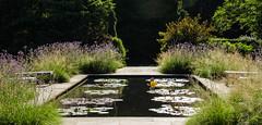 BF-30 (AZDenney) Tags: gardens publicgardens conservatories arboretums