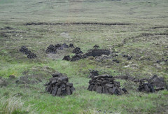 Peat cutting (Monceau) Tags: peat cutting blocks