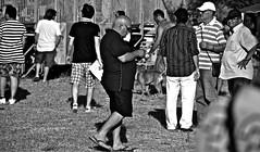 (enricoerriko) Tags: world nyc italien venice girls red sea horses italy rome london torino caballo cheval la italia corse web champion donne rosso cavalli pferd mori italie marche trot  bua corsa stelle capitano  trote  hst    varenne civitanova bl sportman ippodromo civitanovamarche trotto  portocivitanova  campionedelmondo citan   nc nga sanmarone corsadellestelle erriko  civitanovese enricoerriko agosto2013  agosto2013ippodromomori jessicapompa kiu corsaaltrottodellestelle