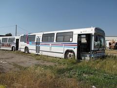 1990 MCI TC40-102A (Ex Connecticut Transit) #5117 (busdude) Tags: calgary classic connecticut ct transit mci tc40102a