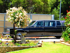 1970s/80s Cadillac Fleetwood Limo (RS 1990) Tags: car wheel sedan december conversion side rear front limo cadillac american adelaide friday disc modification import southaustralia hubcap rare tyre 6th fleetwood uncommon righthanddrive 2013 hallettcove reynella reynellaeast 1970s80s royl02 marianepl