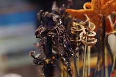 Skorpion_am_Spieß