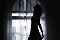 1/52 (Jana L. Kay) Tags: flowers light window silhouette star words poetry song