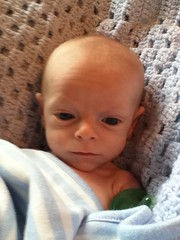 """Paul Misses His Pacifier • <a style=""""font-size:0.8em;"""" href=""""http://www.flickr.com/photos/109120354@N07/11808290734/"""" target=""""_blank"""">View on Flickr</a>"""