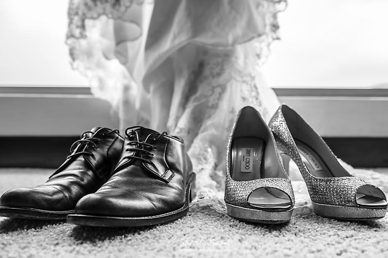 婚攝,晶華,豪園,婚攝鯊魚,婚禮紀錄,婚禮攝影, 2013.11.16-blog-0049