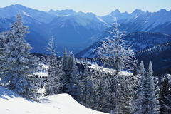 Looking west from mt. Standish (RKop) Tags: canada banff slta77vq 1650ssmf28 raphaelkopanphotography