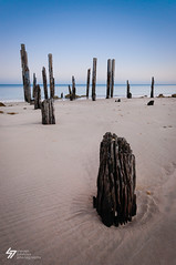Old Post (Steven Johnson Photography) Tags: beach sand jetty posts portwillunga