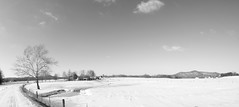 Endurance (Mary America) Tags: winter blackandwhite bw snow solitude cross god kentucky ky country religion monks grayscale greyscale 2014
