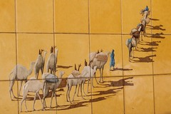 Carovana - street art (Tiziano Caviglia) Tags: streetart ceramica mural liguria caravans murale savona dromedaries maiolica carovana dromedari rivieradellepalme ceramictilework