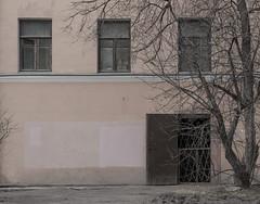 96 (daniil.orlov) Tags: door trees windows tree window wall russia sony petersburg saintpetersburg nex emount nex5n sel55210
