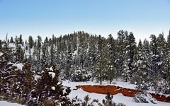 A Wintry Wonderland in Utah (thor_mark ) Tags: trees nature utah unitedstates day3 hillside snowylandscape redcanyon panguitch dixienationalforest project365 colorefexpro lookingsw scenicbyway12 redspires nikond800e drivetobrycecanyon drivetobrycecanyonnationalpark
