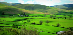 Farming Country - May panorama in the English Lakes (ronramstew) Tags: uk england panorama green english landscape farm farming cumbria thelakedistrict greatphotographers greaterphotographers