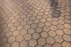 (Yorozuna / ) Tags: road shadow brick japan hiroshima hexagon block takehara