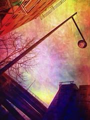 Morning Has Broken (bob eddings) Tags: painterly painting portland pacificnorthwest pdx textured eddings streetwalking 2015 bobeddings associatedpixels ipadprocessed iphone5s portlandoregonimages portlandoregonpictures