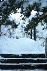 Steps in Binz, Switzerland Dec. 2014 by R. Burri Photography (R. Burri Photography) Tags: schnee winter snow stairs photography switzerland zurich steps richard fotos burri binz treppen burrifotos