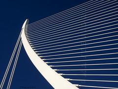 ARPA - HARP (MayteVidri (busy / ocupada)) Tags: espaa valencia lines architecture spain arquitectura olympus calatrava cac harp curve arpa santiagocalatrava omd lineas curva ciudaddelasartesylasciencias em1 valncia cacvalencia 1240 ciutatdelesartsilescincies 1240mm maytevidri micro43 microfourthirds microcuatrotercios pontdelassutdelor olympusem1 20150105 p1057132 em1omdmicro olympusm1240mm puenteazuddeloro bridgeassutdelor