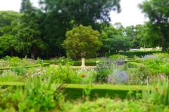 Armillary Sphere, Vergelegen (Beardymonsta) Tags: trees green gardens garden southafrica ornament hedge greenery verdant blooms ornamental shrubs vergelegen somersetwest miniatureeffect