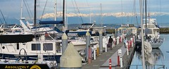 From the Guest Dock at Shilshole marina (stepho.the.bear) Tags: seattle mountains marina dock view olympic guest shilshole