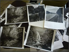 Prints (Yuriy Sanin) Tags: blackandwhite darkroom print  sanin yuriy  silverprint