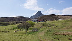 An Sgurr (Michael Pitt Photography) Tags: scotland an eigg sgurr galmisdale