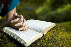 Young woman reading bible (Terrence Gigasoft) Tags: bible book caucasian christian christianity face female god gospel hand hold holy humbled one pray prayer religion religious scripture searching soul spiritual spirituality teen teenage teenager woman young praising praying