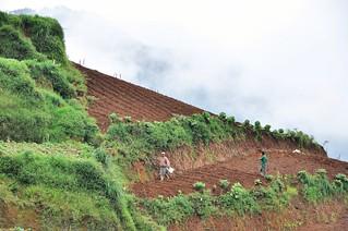dieng plateau - java - indonesie 39